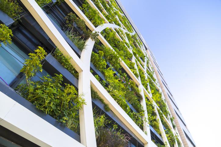 plant-wall